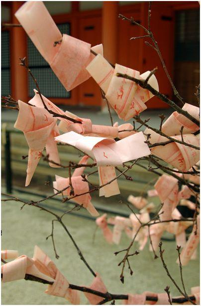 京の春 _f0012154_13345238.jpg