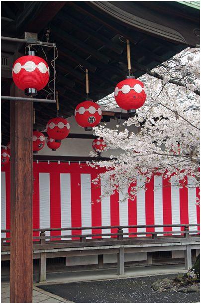 京の春 _f0012154_152683.jpg