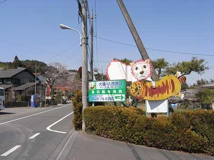 青梅の岩蔵温泉 東京都青梅市_f0117059_21282536.jpg