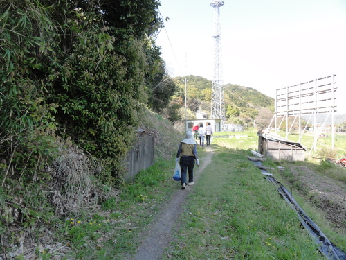 ブロッコリー収穫 in 中孝子の清水農園_c0108460_17402415.jpg