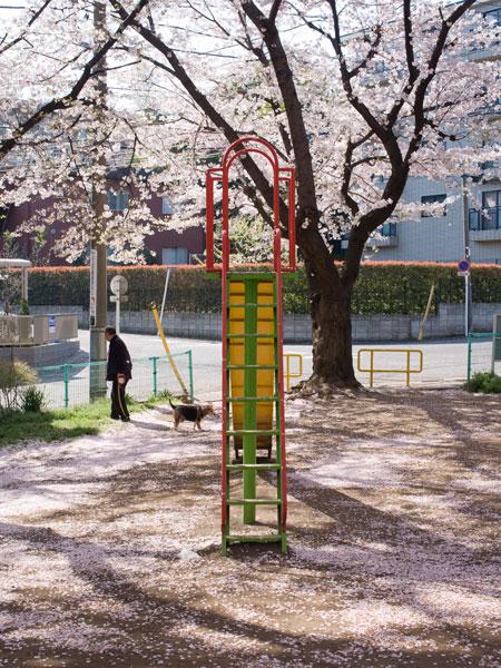 2011/04/12 宮前平、そして武蔵小山@Ricoh GXR_b0171364_10451213.jpg