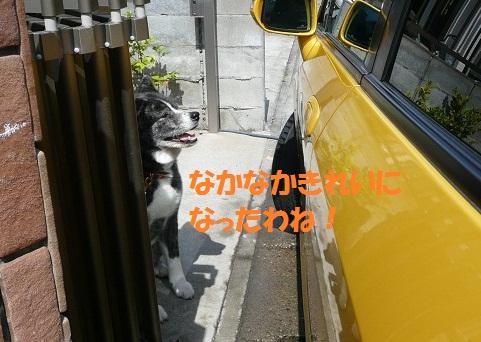 f0121712_1447399.jpg