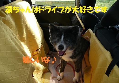 f0121712_14481892.jpg