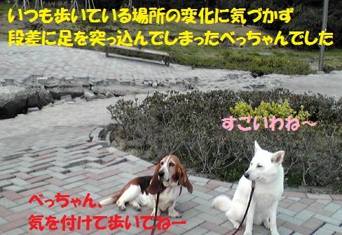 f0121712_14521869.jpg