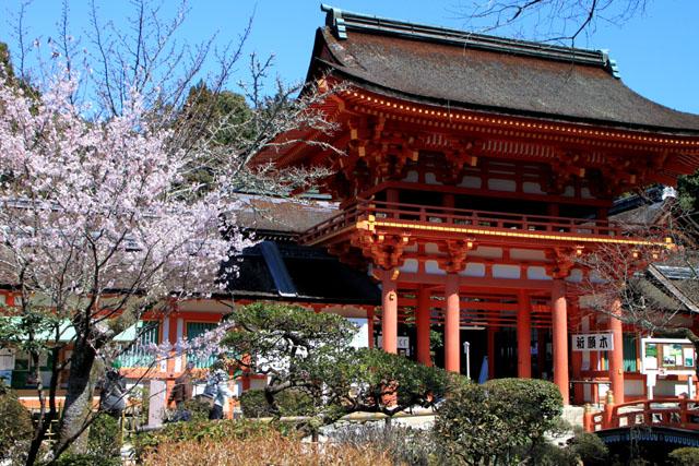 世界遺産の春 上賀茂神社_e0048413_20453499.jpg