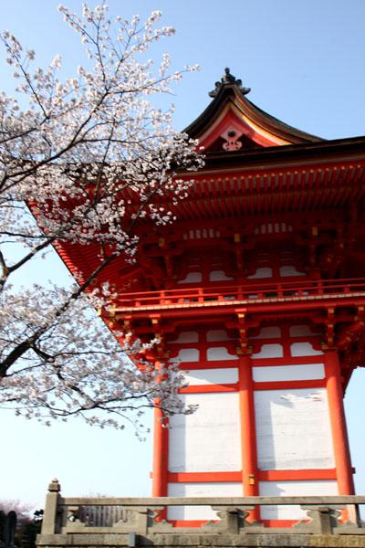 世界遺産の春 清水寺_e0048413_21593855.jpg