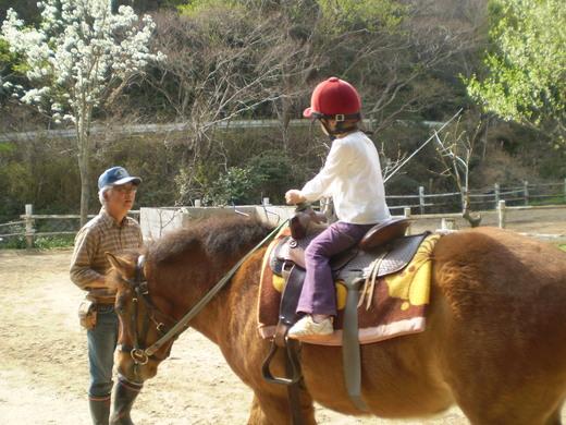 「吉良の赤馬牧場」へお出かけください!_f0139333_020135.jpg