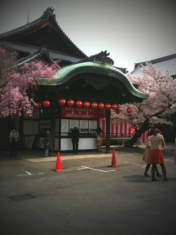 春の京都へ ~~ 前半編 ~~_a0060141_1432791.jpg