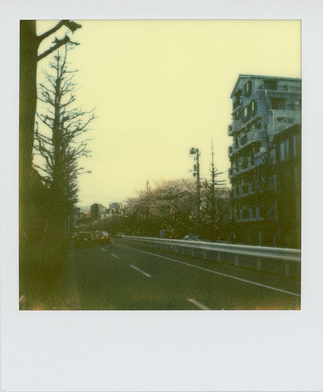 春はまた来ます_a0033881_1182081.jpg