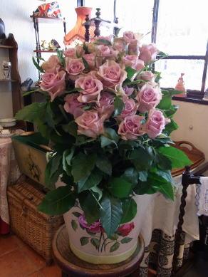 薔薇、バラ、ばら_d0127182_1743458.jpg