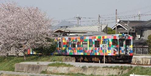加古川線、桜と目玉電車 (兵庫)_b0067283_811172.jpg