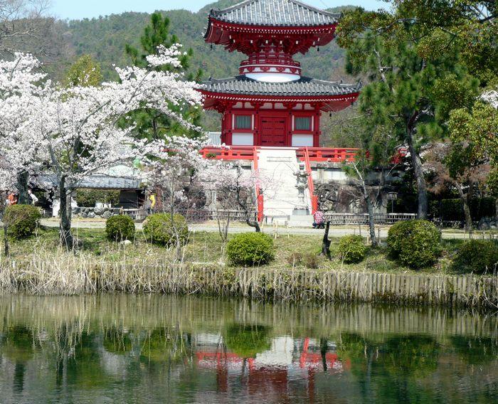 京都見物 2_b0093088_10512280.jpg