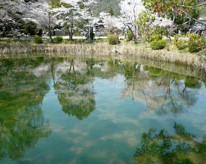 京都見物 2_b0093088_10513589.jpg