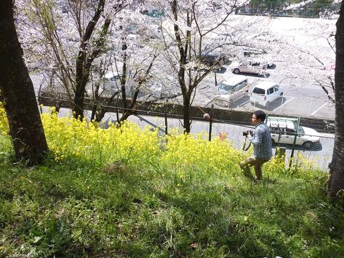 桜舞い上がる道を_b0058796_18524726.jpg
