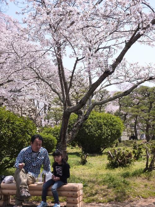 桜舞い上がる道を_b0058796_185294.jpg
