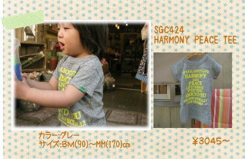 b0153196_13475246.jpg