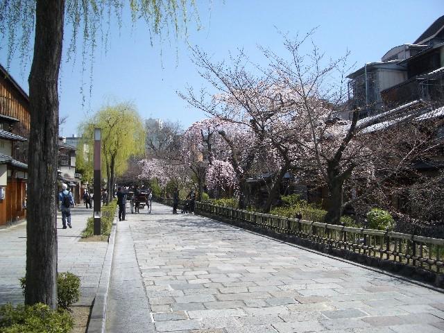 京都花見旅行_a0047004_1415162.jpg