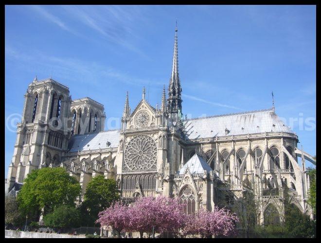 【サクラ】4月6日ノートルダム界隈(PARIS)_a0008105_19503817.jpg