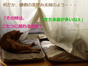 b0200310_739562.jpg