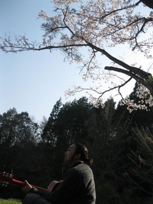 「花見ギャザリング」~~_a0125419_9193830.jpg
