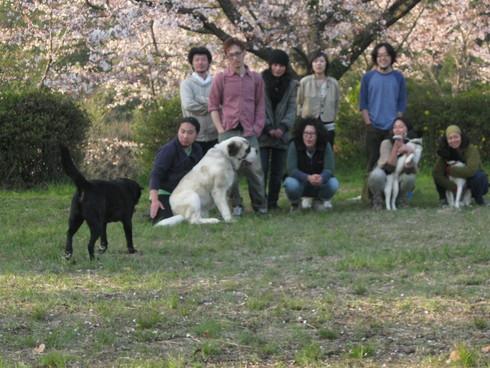 「IBIZA花見会」へ~~_a0125419_946948.jpg