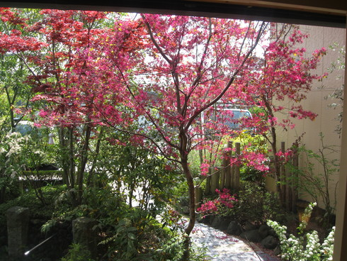 福岡、柳川「WAM」へ~~_a0125419_9511917.jpg