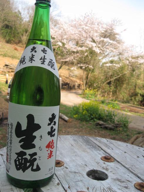 「桜満開~!!!!GGV日田」へ~~_a0125419_951972.jpg