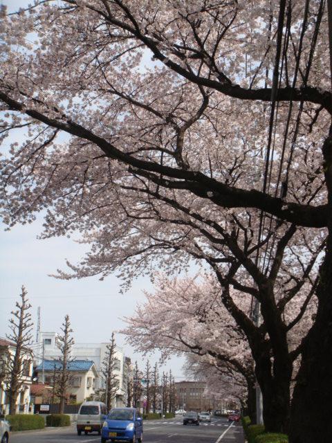 吉祥寺→東中野→参宮橋_a0137727_21301914.jpg
