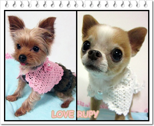 RUPY[2011 Early Summer Collection]先行予約のお知らせ_b0084929_17926.jpg