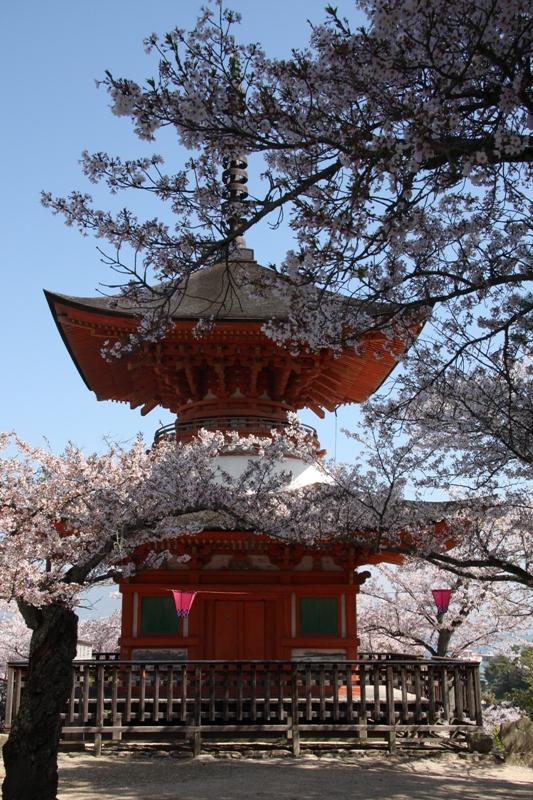 春の宮島_b0190540_20553926.jpg