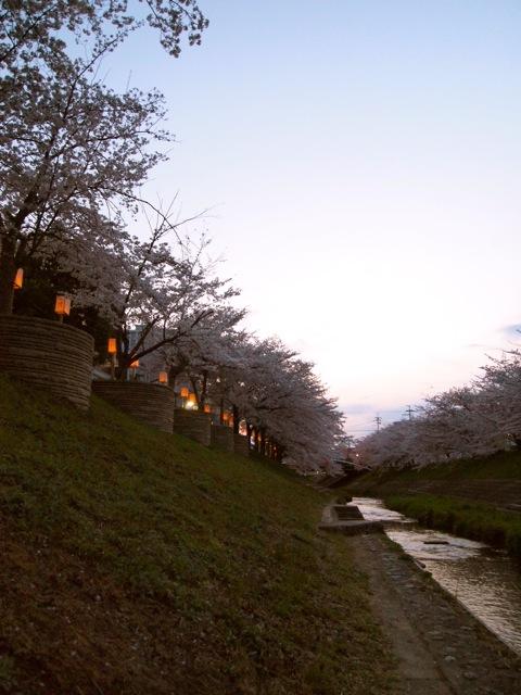 奈良ホテルに泊まり町を歩く_b0166144_7584639.jpg