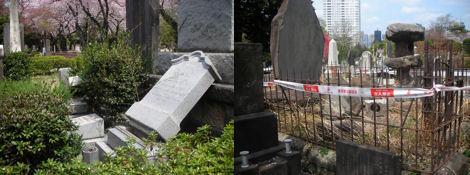 青山墓地の桜はとても綺麗である_d0183174_193657.jpg
