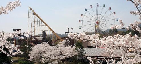 東条湖、春爛漫の週末 (兵庫)_b0067283_17212479.jpg