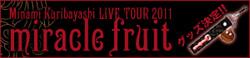 栗林みな実ライブツアー2011 miracle fruit