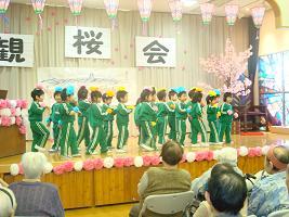 観桜会_c0212598_13253199.jpg