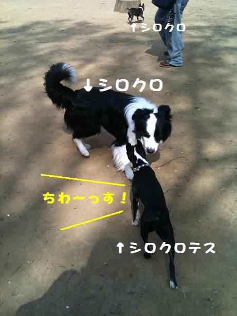 d0218999_0261675.jpg