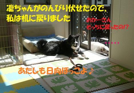 f0121712_7271763.jpg