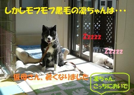 f0121712_7274548.jpg