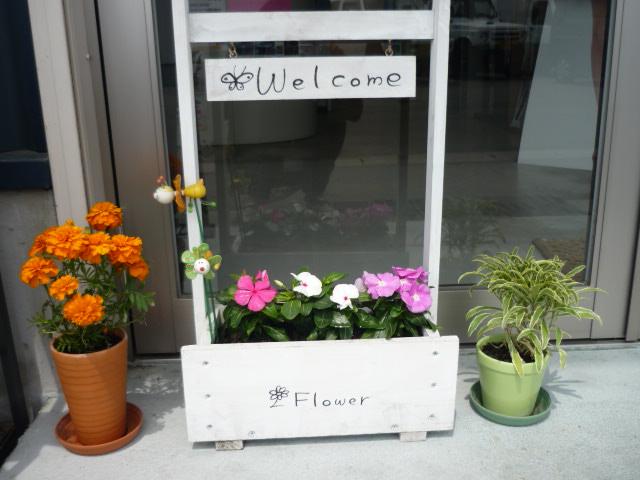 お花(*´∇`)。o_c0213517_12321336.jpg