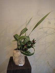 花と花器の展示会_e0109554_10524687.jpg