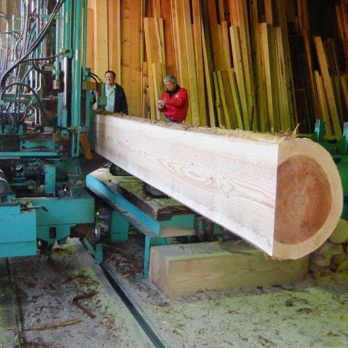 建物の位置決めと木材の手配!_b0112557_235610.jpg