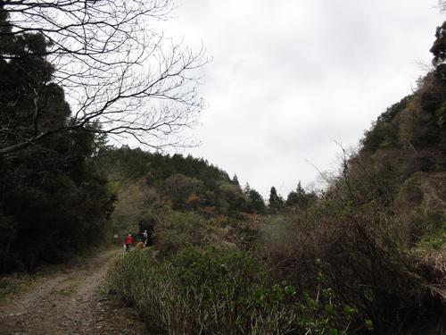 定例活動日:北谷西斜面シダ刈り_c0108460_19561923.jpg
