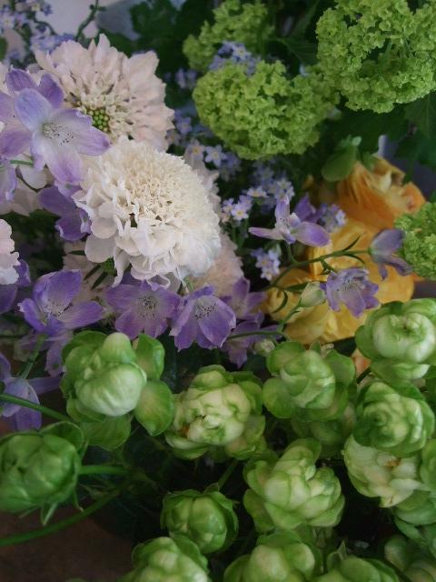 オークリーフ(初夏の花へと・・)_f0049672_15584895.jpg