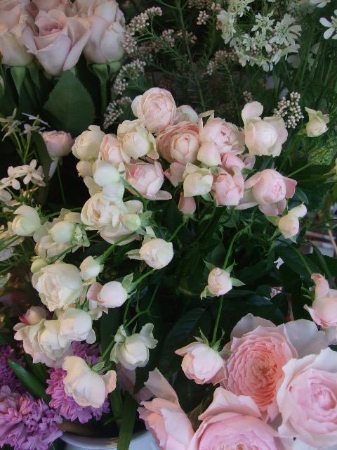 オークリーフ(初夏の花へと・・)_f0049672_1559874.jpg