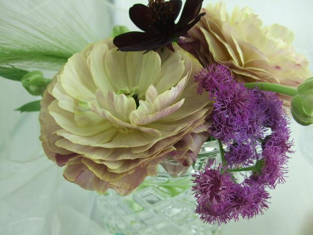 オークリーフ(初夏の花へと・・)_f0049672_16242437.jpg