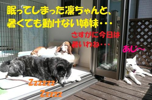 f0121712_23203551.jpg