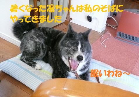 f0121712_23224521.jpg