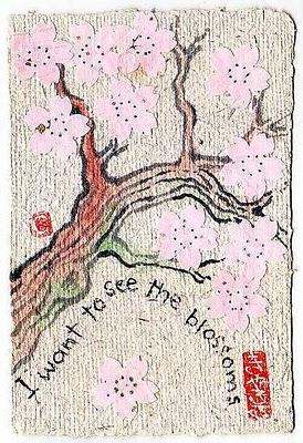 桜!  さくら!  サクラ!  CherryBlossoms!!!_e0054438_17371827.jpg