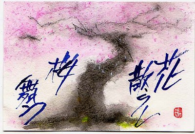 桜!  さくら!  サクラ!  CherryBlossoms!!!_e0054438_17463162.jpg