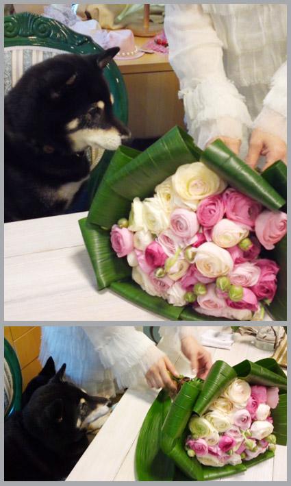 キレイなお姉さんのお誕生会_e0236072_23103694.jpg